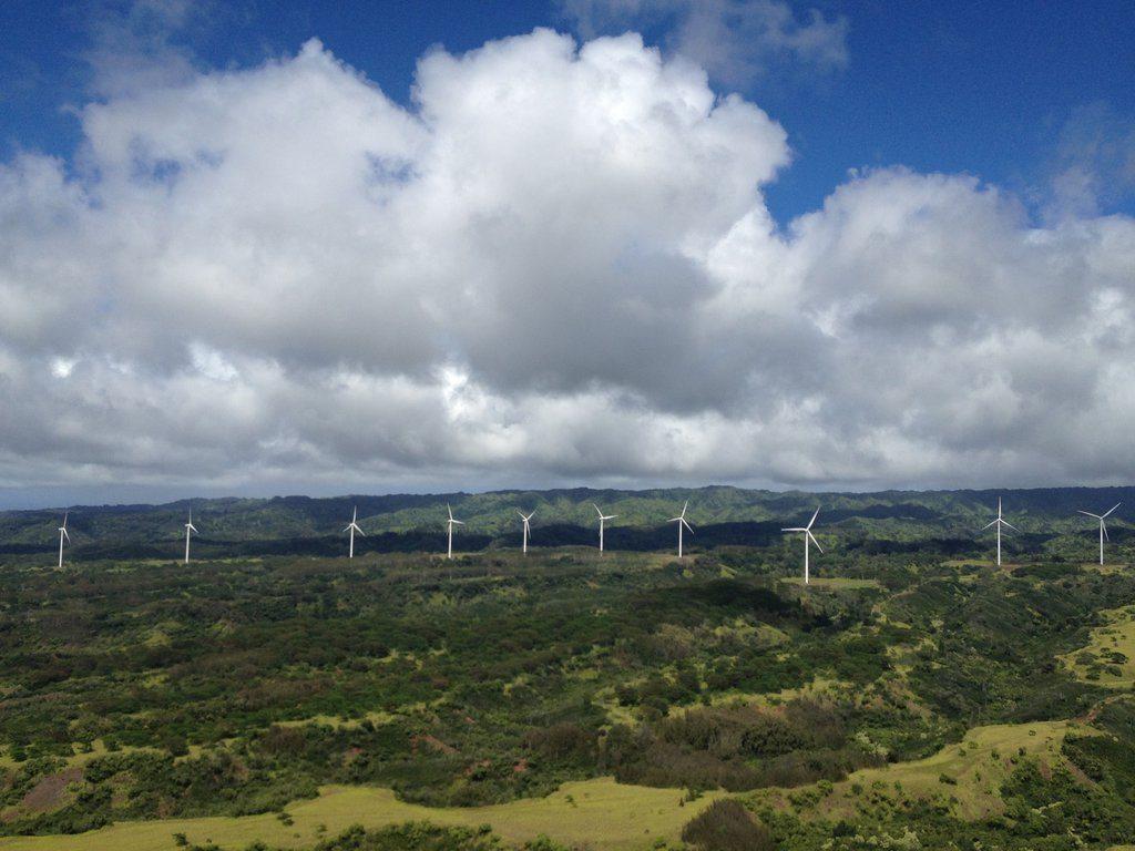 http://blackhawksecurity.info/wp-content/uploads/2016/08/windfarm.jpg